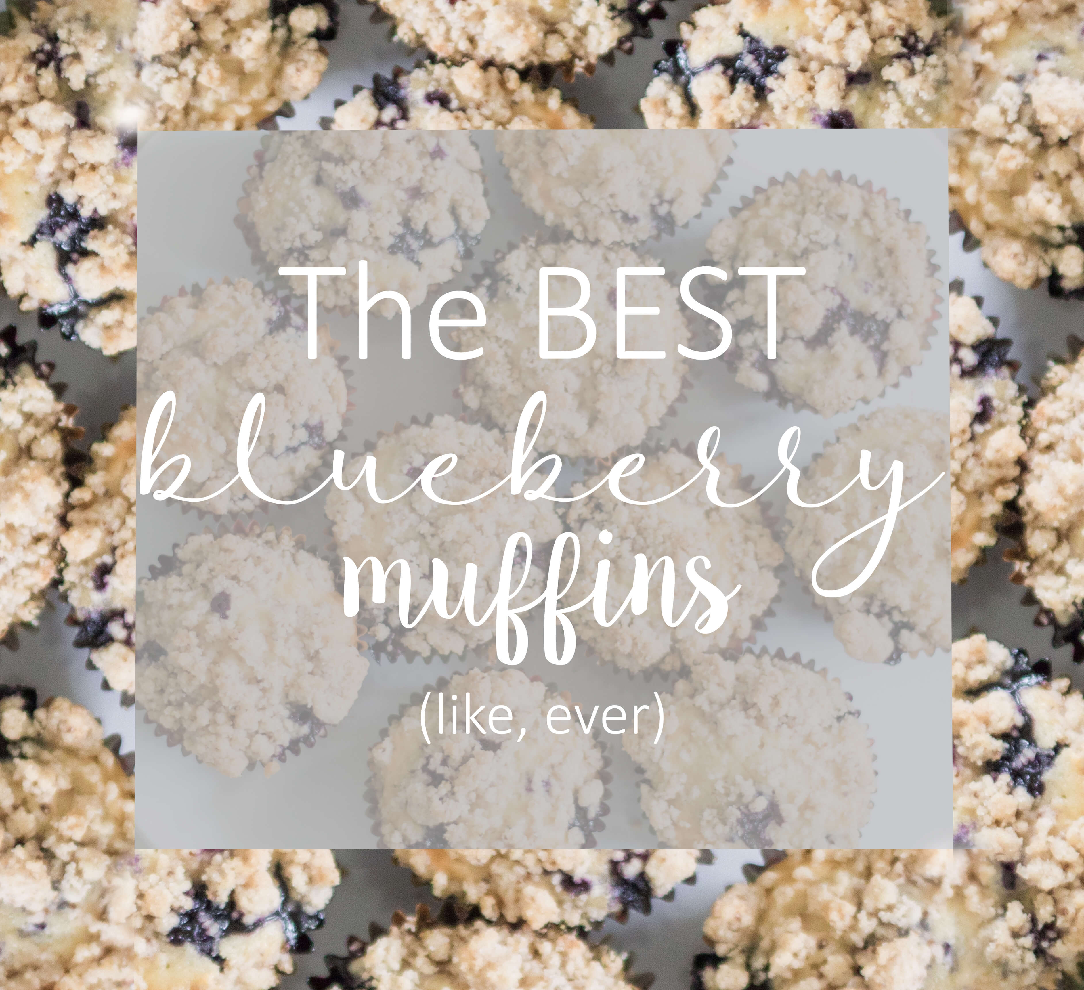 Best Blueberry Muffins, The Only Recipe You Need!